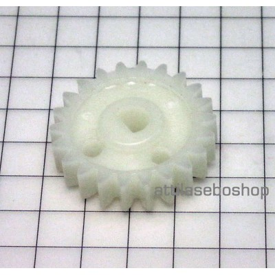 plastic gear 19mm  x 5.3mm  Goldstar